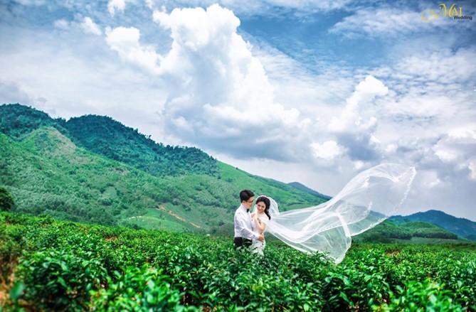 đồi chè ĐÔng Giang - địa điểm chụp ảnh cưới đẹp gần Đà Nẵng